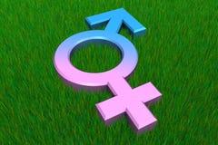 Simbolo maschio/femminile su erba Fotografia Stock Libera da Diritti