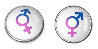 Simbolo maschio/femminile unito tasto Immagini Stock