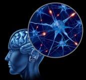 Simbolo medico del cervello umano Fotografia Stock Libera da Diritti