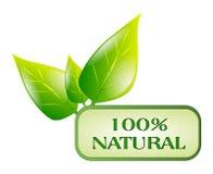 Simbolo naturale isolato Fotografie Stock