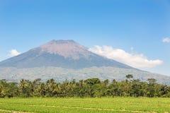 Simbung vulkan i Java i Indonesien Royaltyfria Bilder