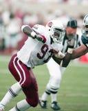 Simeon Rice, guardalinee difensivo di Arizona Cardinals fotografie stock