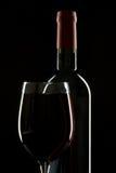Simetría del vino Fotos de archivo libres de regalías
