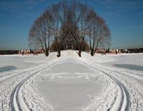 simetria Campo Árvores Foto de Stock Royalty Free