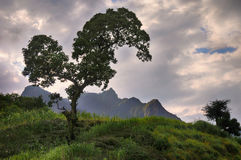 Simien berg parkerar Arkivbilder