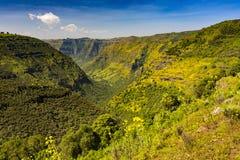 Simien Berge, Äthiopien stockfotografie