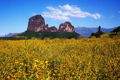 Simien Berge, Äthiopien stockbilder