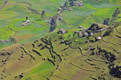 Simien mointains park Obrazy Royalty Free