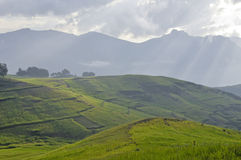 Simien mountain park Stock Image