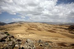 Simien mountains Royalty Free Stock Images