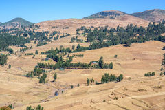 Simien Mountains in Ethiopia Royalty Free Stock Photo
