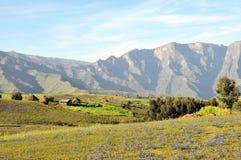 Simien mountains park Stock Images