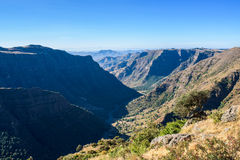 Simien Stock Images