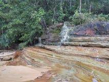 Similajau National Park Royalty Free Stock Photography