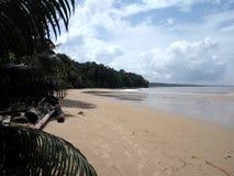 Similajau nationalpark Arkivbild