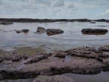 Similajau nationalpark Royaltyfri Foto