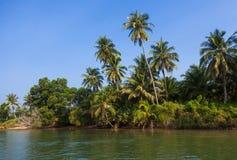 Similan在普吉岛附近的海岛海岸在泰国 库存图片