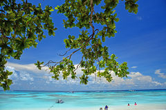 Similan Islands National Park Royalty Free Stock Photo
