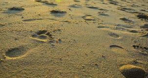 Similan wysp park narodowy Zdjęcie Stock