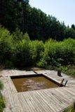 Simma i natur med att läka vatten arkivbilder