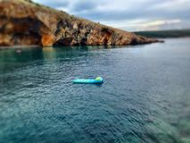 Simma kudden i havet arkivfoton
