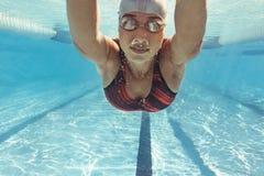 Simmareutbildning i pölen royaltyfria foton