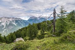 Simmering mountain in Austria Royalty Free Stock Photography