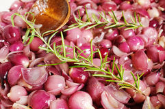 Simmering young red onion Royalty Free Stock Photos