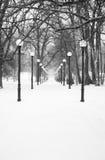 Simmetria di inverno Immagine Stock Libera da Diritti