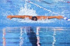 simning Arkivfoton