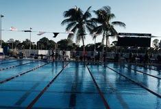 simning Arkivbilder