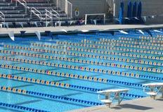 simning för 2 pöl arkivfoton