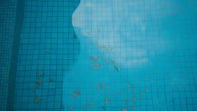 simning för smutsig pöl Arkivbilder