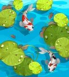 Simning för två fisk i dammet vektor illustrationer