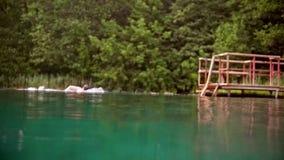 Simningbröstsim för ung man i sjön arkivfilmer