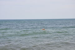 Simningman i havet Arkivfoto