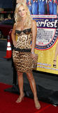 Simona Fusco. HOLLYWOOD, CALIFORNIA. Monday August 21, 2006. Simona Fusco Stratten attends the Los Angeles Premiere of Beerfest held at the Grauman's Chinese Stock Photography
