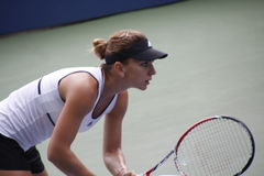 Simona Halep. Tennis champion Simona Halep during a practice session, at the 2014 US Open Royalty Free Stock Photos