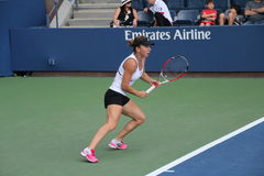 Simona Halep. Tennis champion Simona Halep during a practice session, at the 2014 US Open Royalty Free Stock Photography