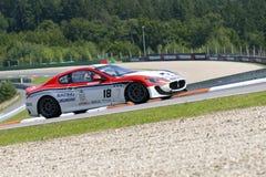 Simoncini Mauro nell'azione alla FIA WTCC il Trofeo immagini stock