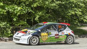 Simone Tempestini- Dorin Pulpea- Transylvania Rally 2014 Royalty Free Stock Photo