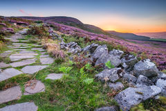 Simonside Hills path at Sunset. Popular with walkers and hikers the Simonside Hills are covered with heather in late summer. they are part of Northumberland Stock Photo