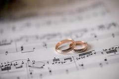 Simphony av lycka och förälskelse Royaltyfri Fotografi