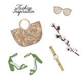 Simple accessories flatlay: bag, sunglasses, shoes, plant vector sketch. Glamour fashionable magazine illustration stock illustration