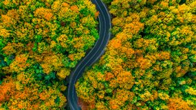 Simple aerial view of road in fall colored woods. Aerial view of road in fall colored woods Royalty Free Stock Image