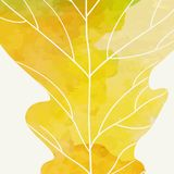 Simple Autumn Background Royalty Free Stock Image