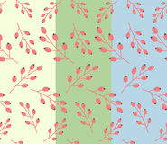 Simple autumn floral pattern: fruit of barberry Stock Photos