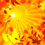 Simple autumn template vector background with flying leaves. Good for your autumn design Royalty Free Stock Photos