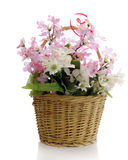 Simple Basket of Flowers Royalty Free Stock Photos