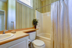 Simple bathroom interior with green wallpaper Stock Images